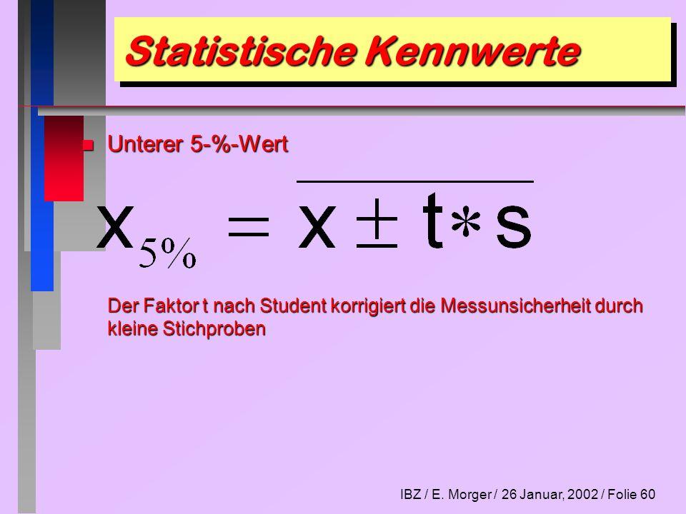 IBZ / E. Morger / 26 Januar, 2002 / Folie 60 Statistische Kennwerte n Unterer 5-%-Wert Der Faktor t nach Student korrigiert die Messunsicherheit durch