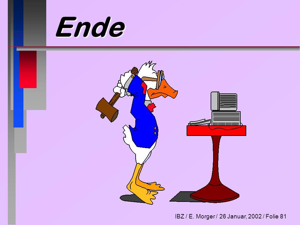 IBZ / E. Morger / 26 Januar, 2002 / Folie 81 Ende