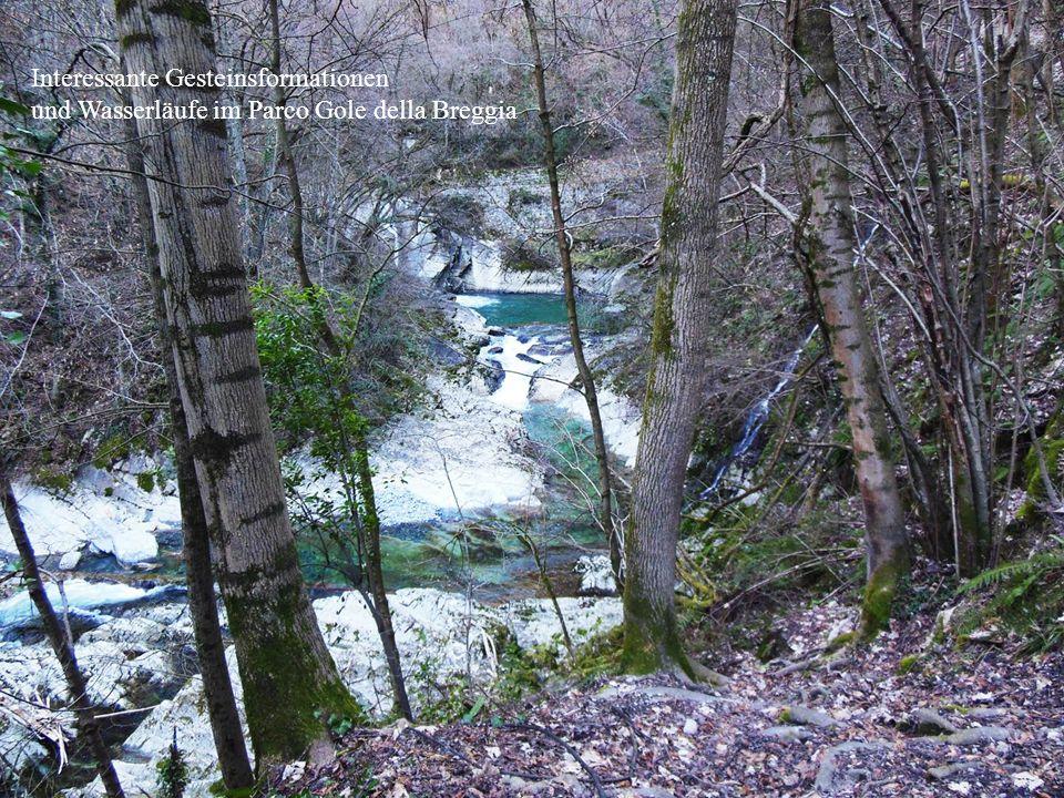 Interessante Gesteinsformationen und Wasserläufe im Parco Gole della Breggia