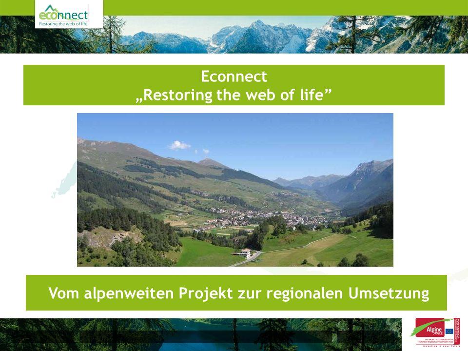 Econnect Restoring the web of life Vom alpenweiten Projekt zur regionalen Umsetzung