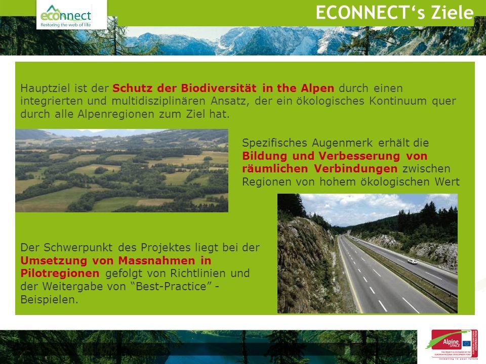 Hauptziel ist der Schutz der Biodiversität in the Alpen durch einen integrierten und multidisziplinären Ansatz, der ein ökologisches Kontinuum quer du
