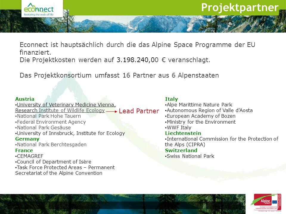 Econnect ist hauptsächlich durch die das Alpine Space Programme der EU finanziert. Die Projektkosten werden auf 3.198.240,00 veranschlagt. Das Projekt