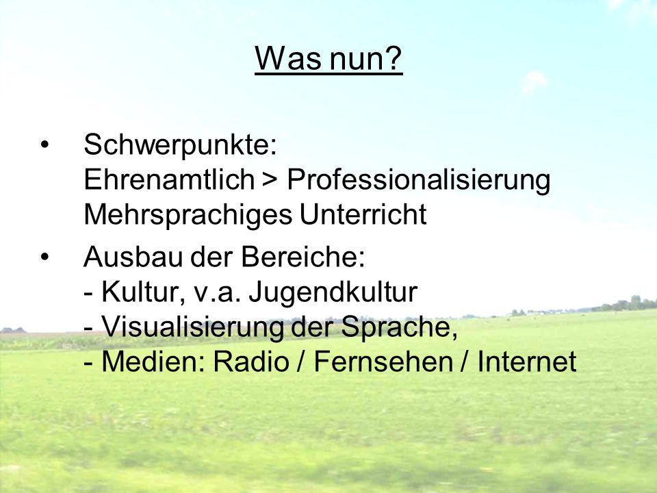 Was nun? Schwerpunkte: Ehrenamtlich > Professionalisierung Mehrsprachiges Unterricht Ausbau der Bereiche: - Kultur, v.a. Jugendkultur - Visualisierung