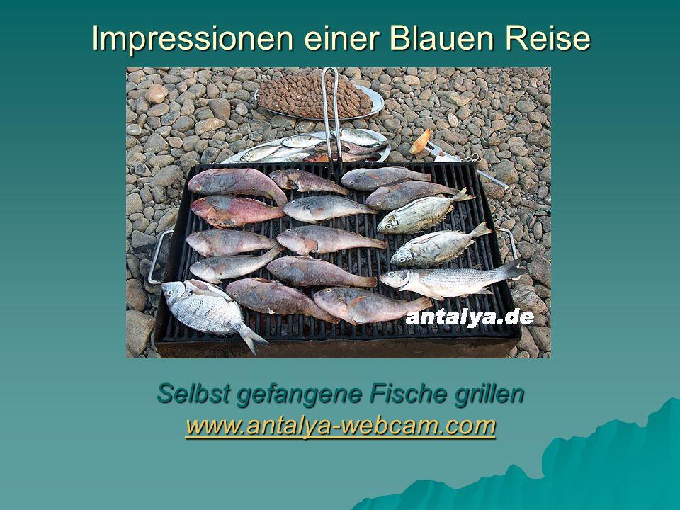 Impressionen einer Blauen Reise Selbst gefangene Fische grillen www.antalya-webcam.com