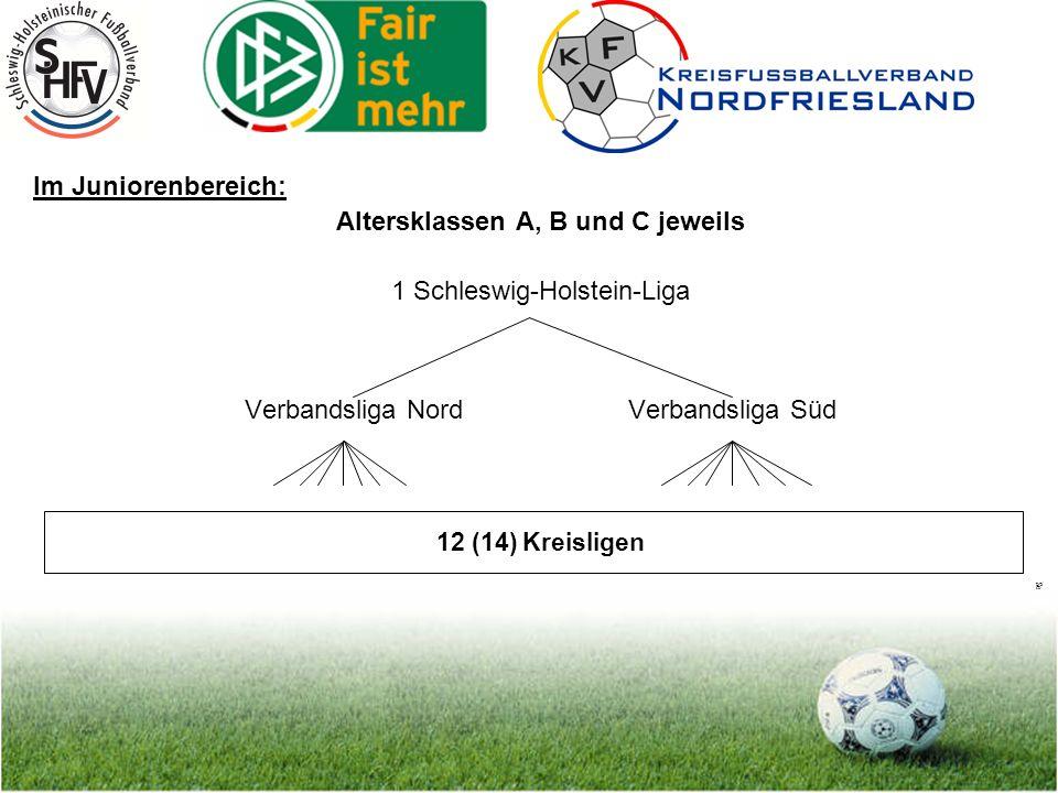 Seite 5 Im Juniorinnenbereich: Zunächst Altersklasse B-Juniorinnen 1 Schleswig-Holstein-Liga (11er) Verbandsklasse VerbandsklasseVerbandsklasseVerbandsklasse Nord-West (11er) Nord-Ost (11er) Süd-West (11er) Süd-Ost (11er) Kreisligen sowohl 7er und 11er (B/C-D Jahrgänge)