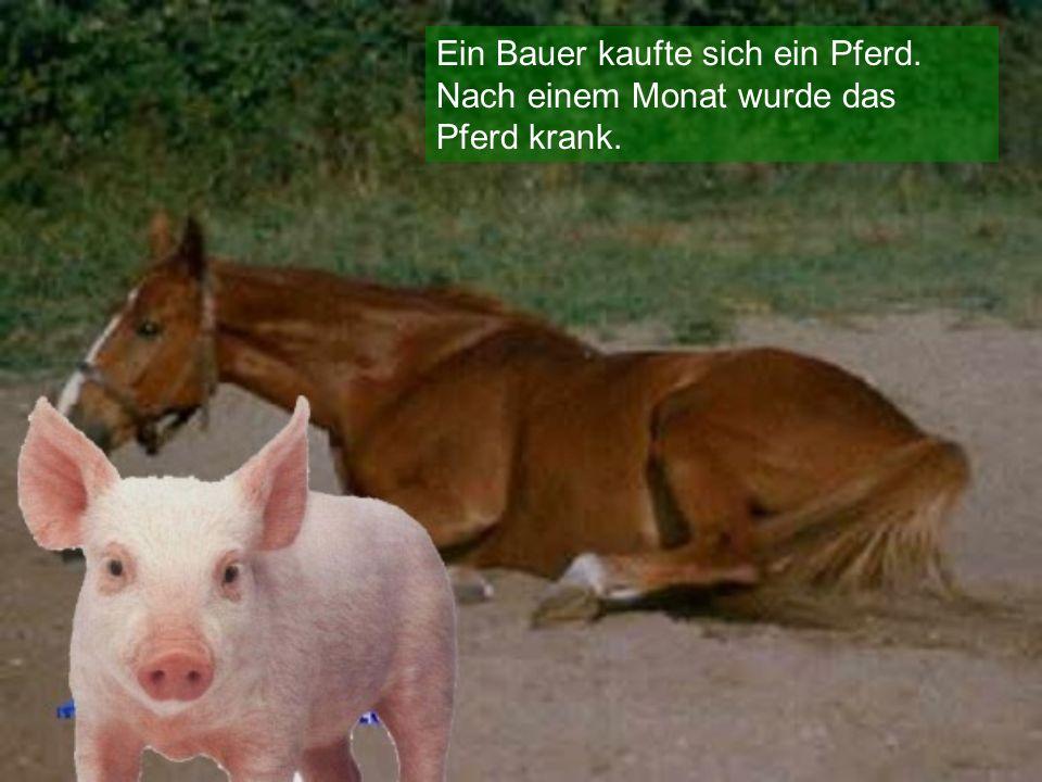 Der Bauer holte einen Tierarzt.