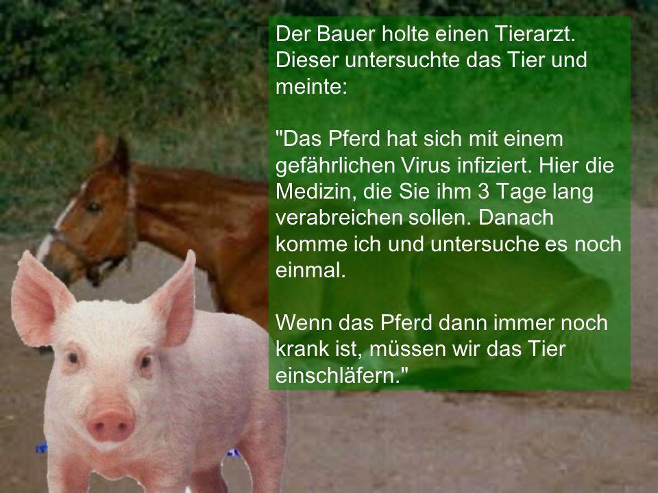 Der Bauer holte einen Tierarzt. Dieser untersuchte das Tier und meinte: