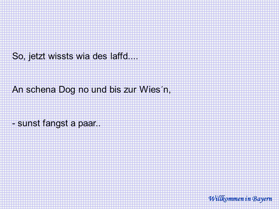 So, jetzt wissts wia des laffd.... An schena Dog no und bis zur Wies´n, - sunst fangst a paar.. Willkommen in Bayern