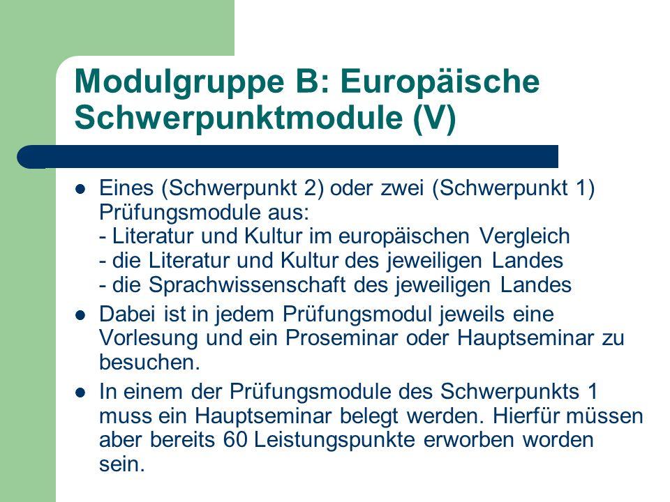 Modulgruppe B: Europäische Schwerpunktmodule (VI) Historisch-Sozialwissenschaftliches Fach: Wiederum zwei Basismodule und ein (Schwerpunkt 2) oder zwei Prüfungsmodule (Schwerpunkt 1).