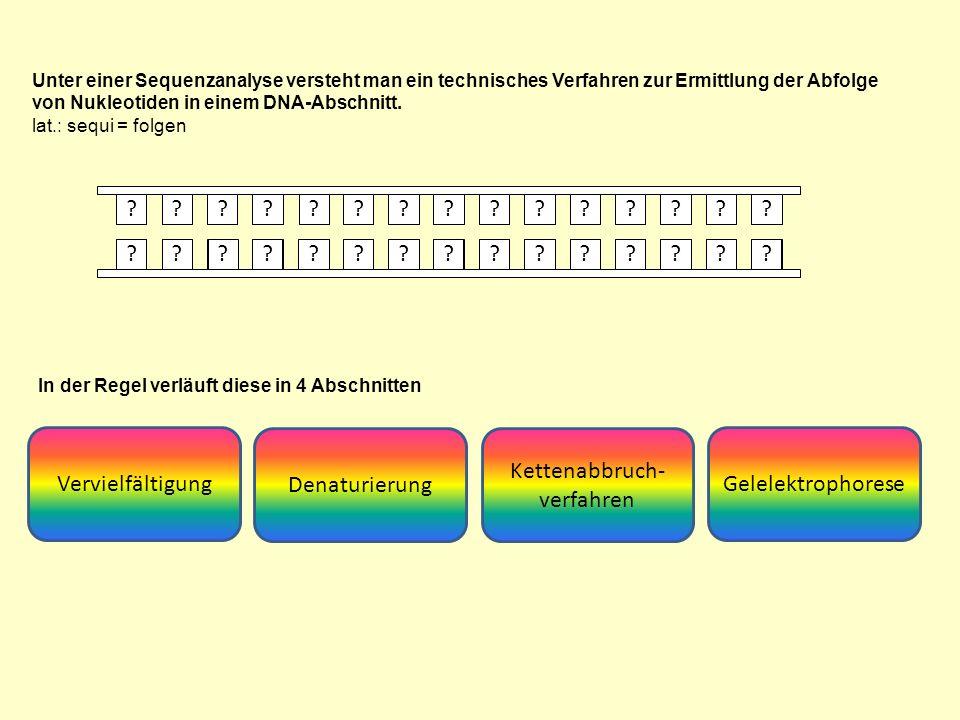 Unter einer Sequenzanalyse versteht man ein technisches Verfahren zur Ermittlung der Abfolge von Nukleotiden in einem DNA-Abschnitt.