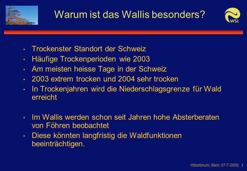 Hitzeforum, Bern, 07-7-2005, 3 Warum ist das Wallis besonders.