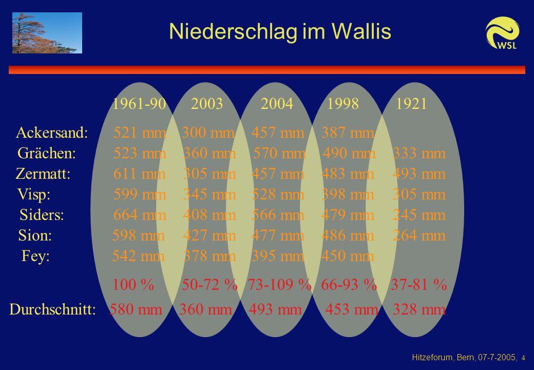Hitzeforum, Bern, 07-7-2005, 4 Niederschlag im Wallis 1961-90 Ackersand:521 mm Zermatt: 345 mm 360 mm Fey: Sion: Siders: Visp: Grächen: 20032004 523 mm 611 mm 599 mm 664 mm 598 mm 542 mm 300 mm 305 mm 408 mm 427 mm 378 mm 477 mm 528 mm 1998 486 mm 398 mm 264 mm 1921 50-72 %73-109 %37-81 % 305 mm 566 mm479 mm245 mm 457 mm483 mm493 mm 457 mm387 mm 395 mm450 mm 570 mm490 mm 66-93 % 580 mm 100 % 493 mm360 mm 453 mm 328 mm 333 mm Durchschnitt: