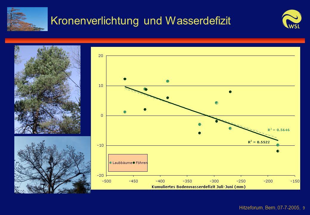 Hitzeforum, Bern, 07-7-2005, 9 Kronenverlichtung und Wasserdefizit
