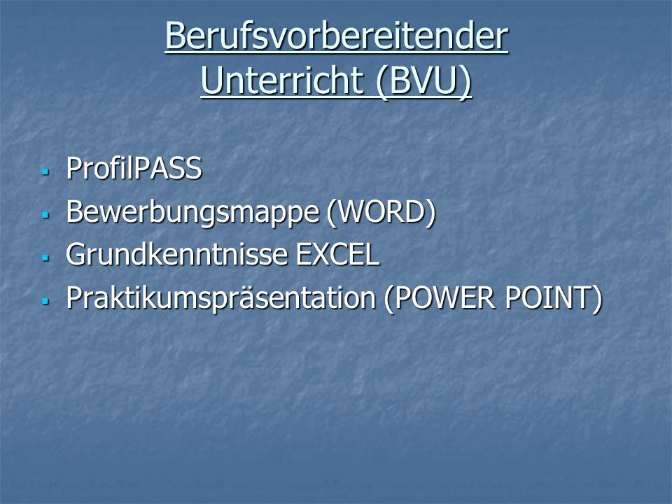 Berufsvorbereitender Unterricht (BVU) ProfilPASS ProfilPASS Bewerbungsmappe (WORD) Bewerbungsmappe (WORD) Grundkenntnisse EXCEL Grundkenntnisse EXCEL