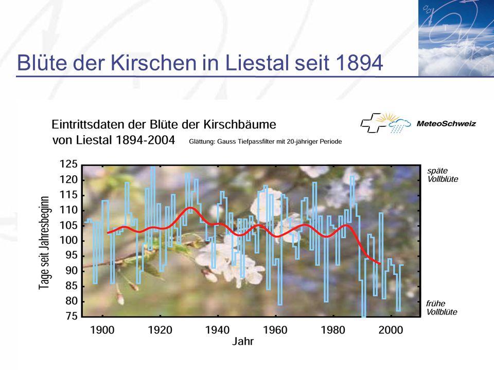 Blüte der Kirschen in Liestal seit 1894