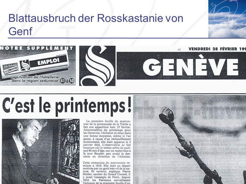 Blattausbruch der Rosskastanie von Genf