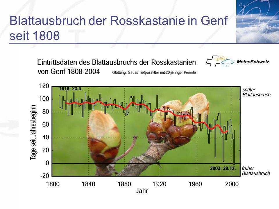 Blattausbruch der Rosskastanie in Genf seit 1808