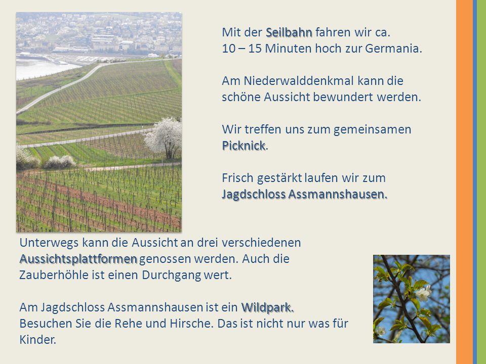 Seilbahn Mit der Seilbahn fahren wir ca. 10 – 15 Minuten hoch zur Germania. Am Niederwalddenkmal kann die schöne Aussicht bewundert werden. Picknick W