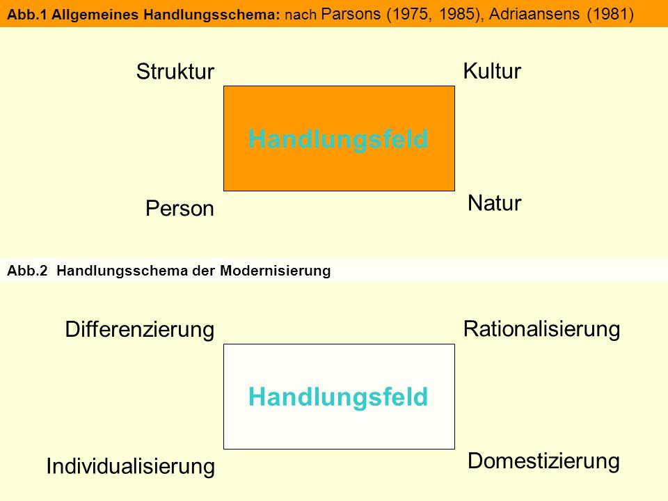 Handlungsfeld Struktur Person Kultur Natur Abb.1 Allgemeines Handlungsschema: nach Parsons (1975, 1985), Adriaansens (1981) Handlungsfeld Differenzierung Individualisierung Rationalisierung Domestizierung Abb.2 Handlungsschema der Modernisierung