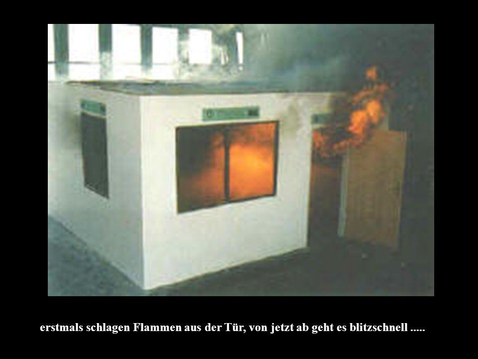 erstmals schlagen Flammen aus der Tür, von jetzt ab geht es blitzschnell.....
