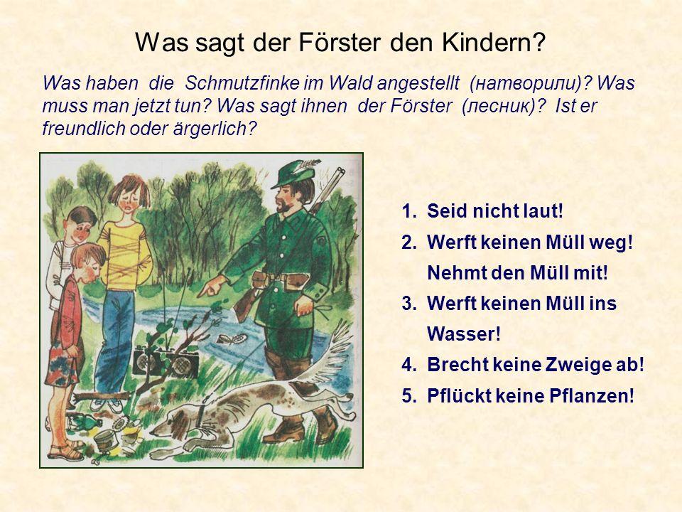Was sagt der Förster den Kindern? Was haben die Schmutzfinke im Wald angestellt (натворили)? Was muss man jetzt tun? Was sagt ihnen der Förster (лесни