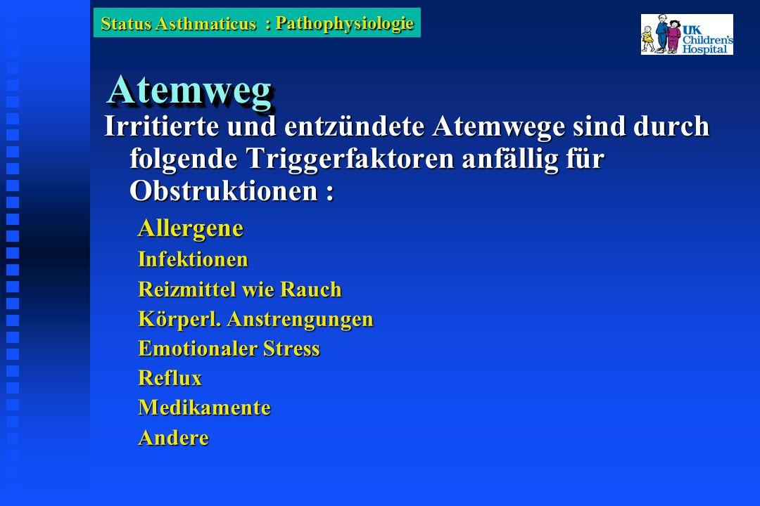 Status Asthmaticus AtemwegAtemweg Irritierte und entzündete Atemwege sind durch folgende Triggerfaktoren anfällig für Obstruktionen : Allergene AllergeneInfektionen Reizmittel wie Rauch Körperl.