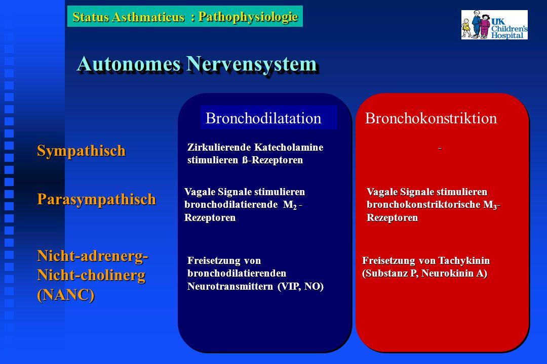 Status Asthmaticus Autonomes Nervensystem BronchodilatationBronchokonstriktion Sympathisch Zirkulierende Katecholamine stimulieren ß-Rezeptoren - Parasympathisch Vagale Signale stimulieren bronchodilatierende M 2 - Rezeptoren Vagale Signale stimulieren bronchokonstriktorische M 3 - Rezeptoren Nicht-adrenerg- Nicht-cholinerg (NANC) Freisetzung von bronchodilatierenden Neurotransmittern (VIP, NO) Freisetzung von Tachykinin (Substanz P, Neurokinin A) : Pathophysiologie