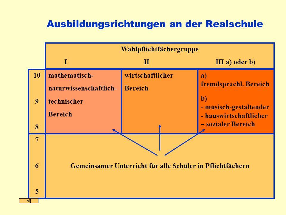 mathematisch- naturwissenschaftlich- technischer Bereich a) fremdsprachl. Bereich b) - musisch-gestaltender - hauswirtschaftlicher – sozialer Bereich