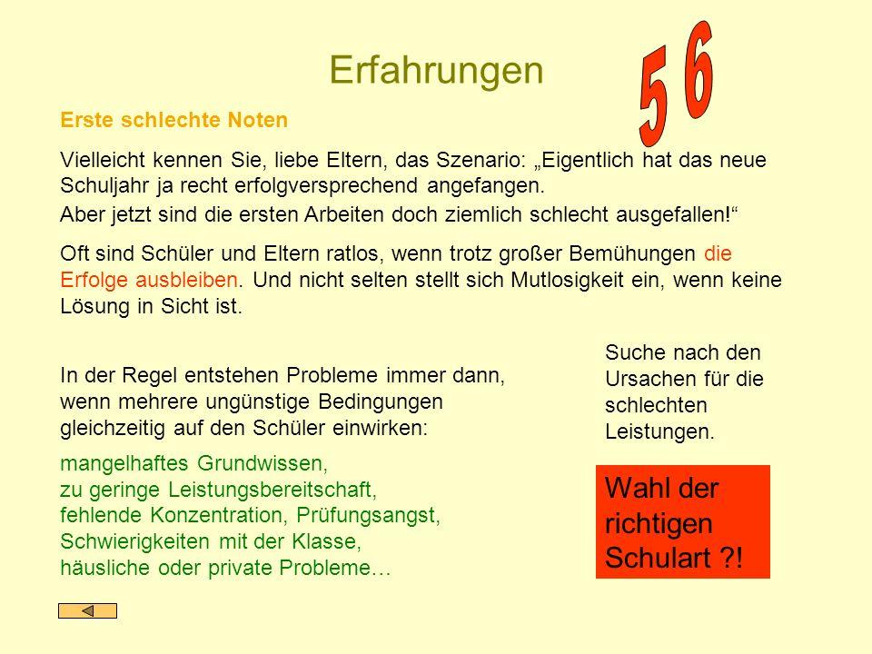 - Berufsorientierung - Zweiwöchiges Betriebspraktikum in der 8.