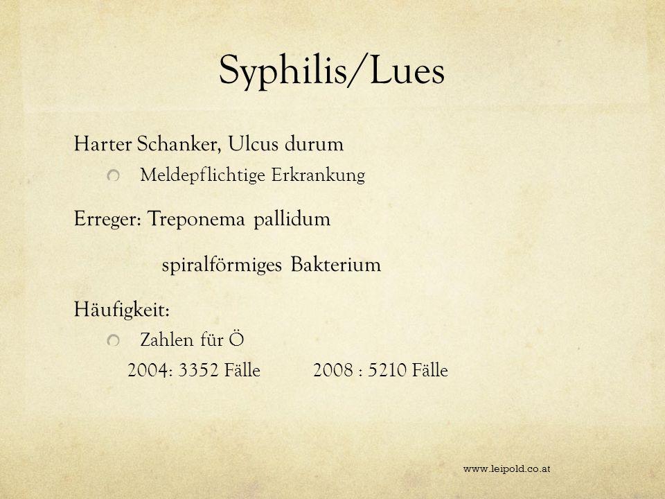 Syphilis/Lues Harter Schanker, Ulcus durum Meldepflichtige Erkrankung Erreger: Treponema pallidum spiralförmiges Bakterium Häufigkeit: Zahlen für Ö 20
