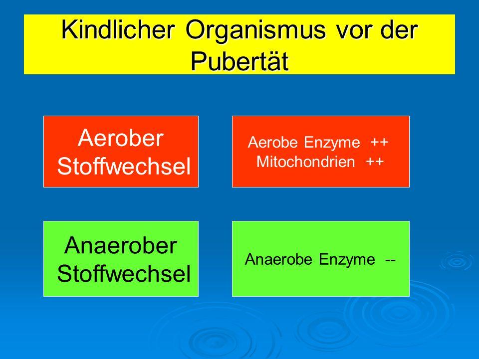 Kindlicher Organismus vor der Pubertät Aerober Stoffwechsel Anaerober Stoffwechsel Aerobe Enzyme ++ Mitochondrien ++ Anaerobe Enzyme --