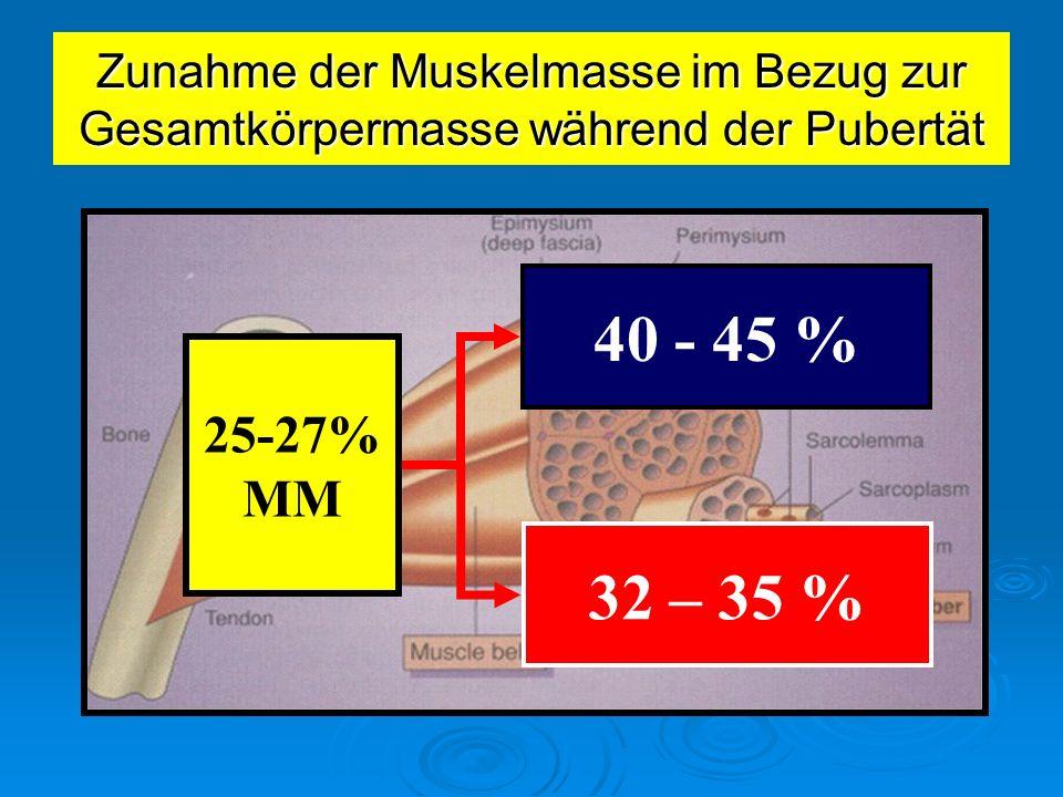 25-27% MM 40 - 45 % 32 – 35 % Zunahme der Muskelmasse im Bezug zur Gesamtkörpermasse während der Pubertät