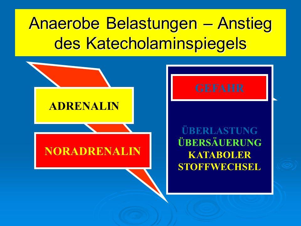 ANAEROBE BELASTUNGEN KATECHOLAMINSPIEGEL Gefahr durch anaerobe Belastungen