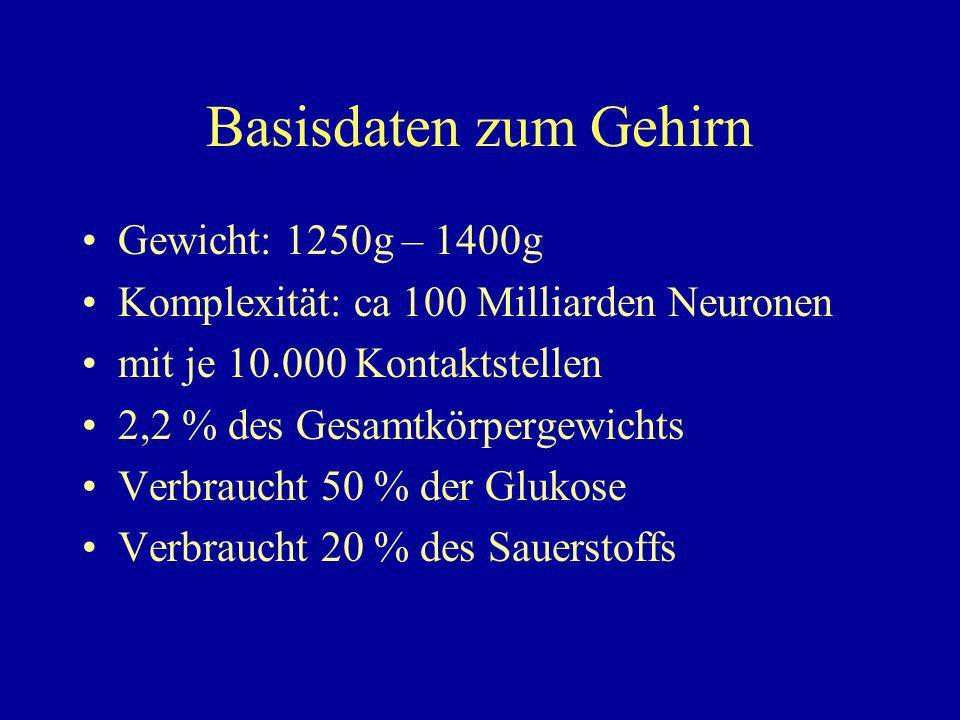 Basisdaten zum Gehirn Gewicht: 1250g – 1400g Komplexität: ca 100 Milliarden Neuronen mit je 10.000 Kontaktstellen 2,2 % des Gesamtkörpergewichts Verbraucht 50 % der Glukose Verbraucht 20 % des Sauerstoffs