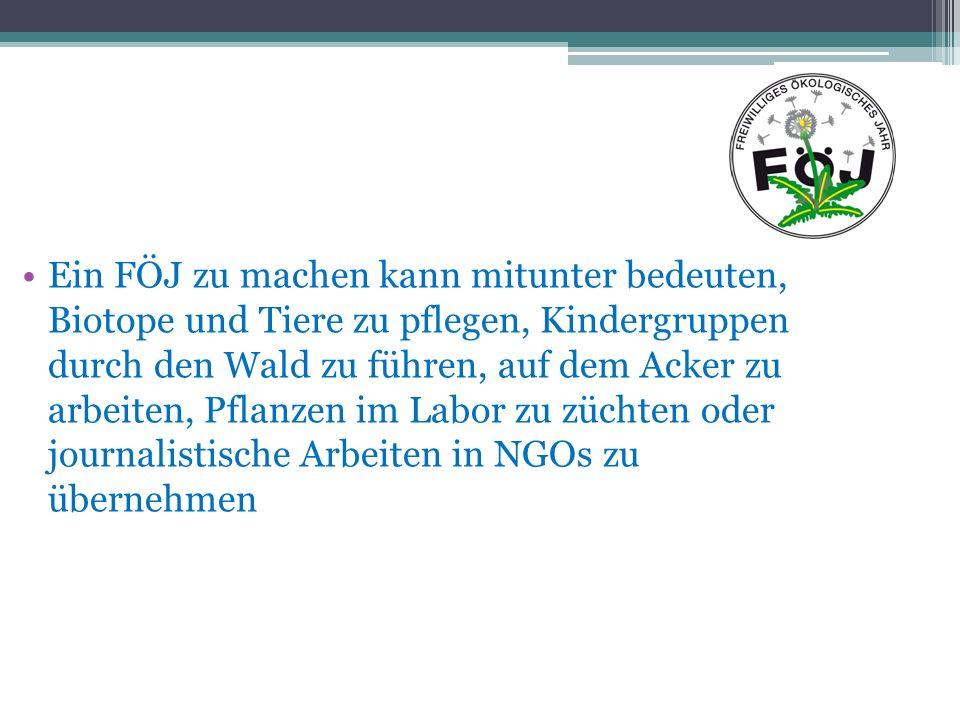 Die Träger Stiftung Naturschutz Berlin (www.stiftung- naturschutz.de) Jugendwerk Aufbau Ost (www.jao-berlin.de) Vereinigung Junger Freiwilliger (vjf.de)