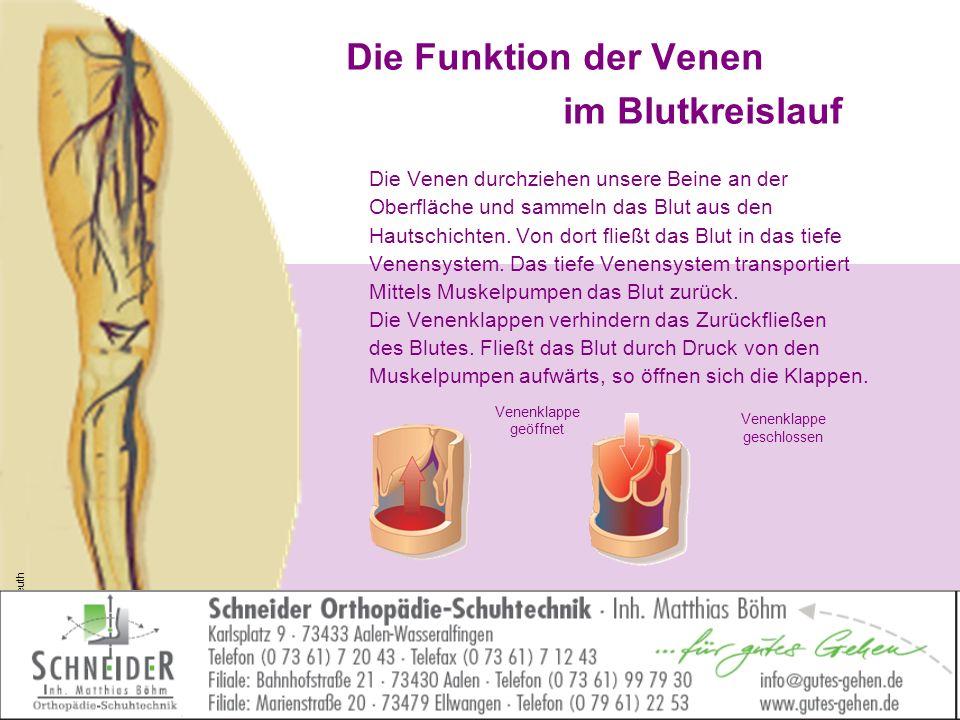 Die Funktion der Venen im Blutkreislauf Die Venen durchziehen unsere Beine an der Oberfläche und sammeln das Blut aus den Hautschichten. Von dort flie
