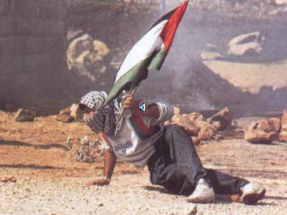 Mohd. Abu Assi, wurde durch einen Schuss ins Herz getötet! [Ort: Gaza]