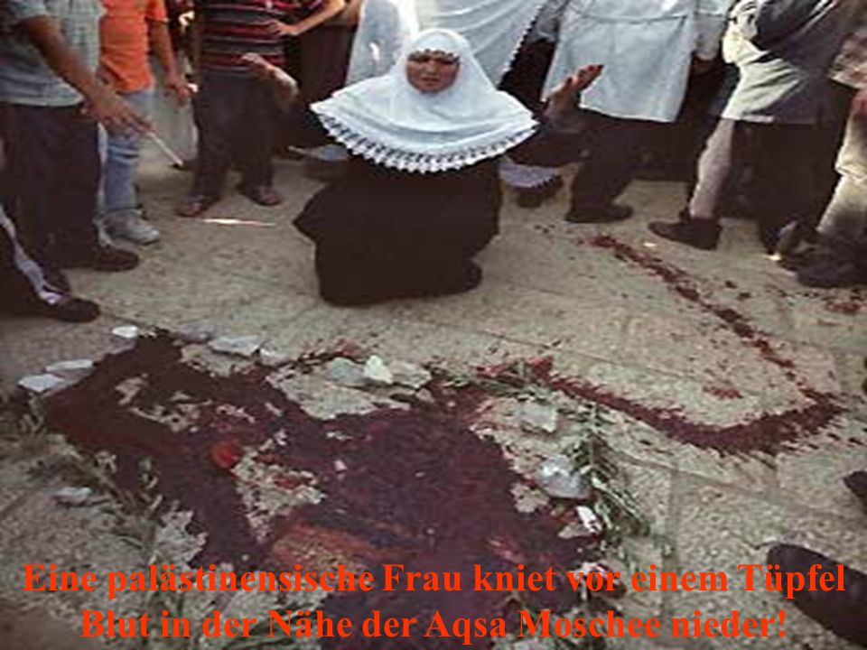Eine palästinensische Frau kniet vor einem Tüpfel Blut in der Nähe der Aqsa Moschee nieder!