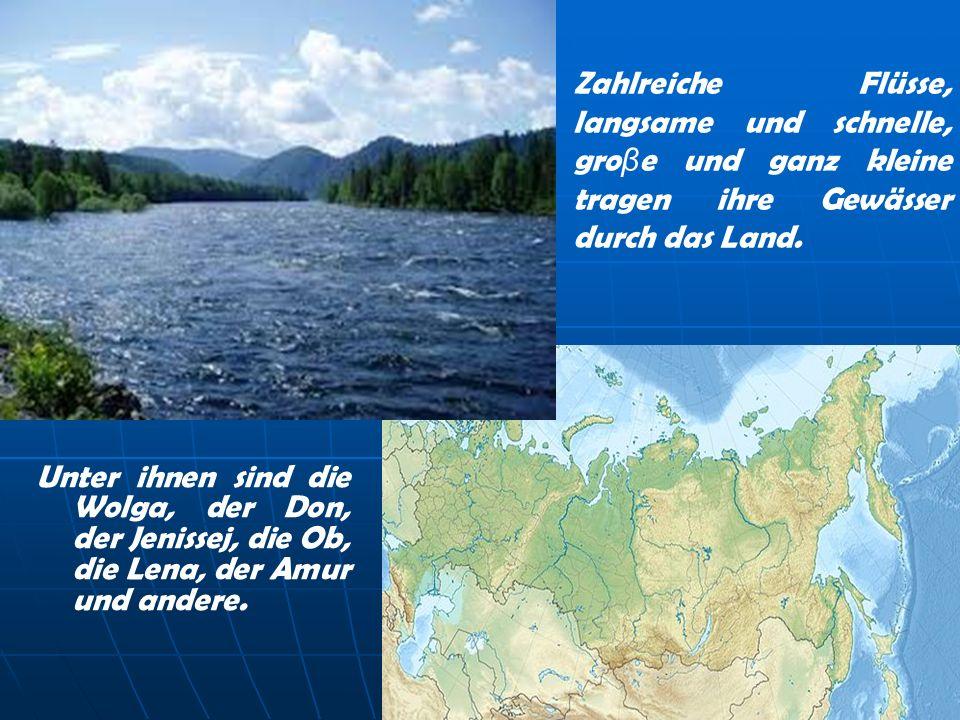 Zahlreiche Flüsse, langsame und schnelle, gro β e und ganz kleine tragen ihre Gewässer durch das Land. Unter ihnen sind die Wolga, der Don, der Jeniss