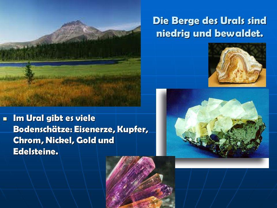 Die Berge des Urals sind niedrig und bewaldet. Im Ural gibt es viele Bodenschätze: Eisenerze, Kupfer, Chrom, Nickel, Gold und Edelsteine. Im Ural gibt