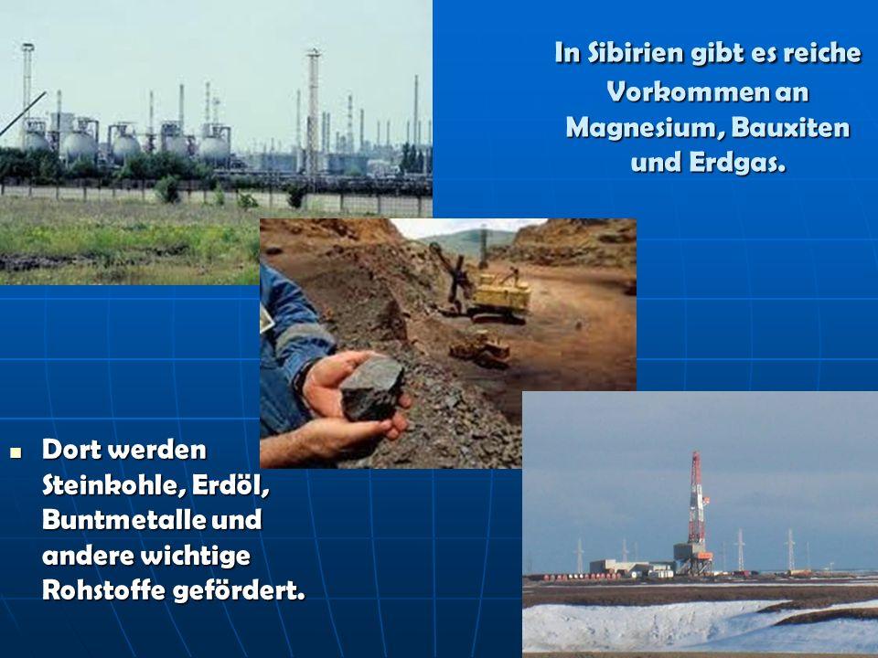 In Sibirien gibt es reiche Vorkommen an Magnesium, Bauxiten und Erdgas. Dort werden Steinkohle, Erdöl, Buntmetalle und andere wichtige Rohstoffe geför
