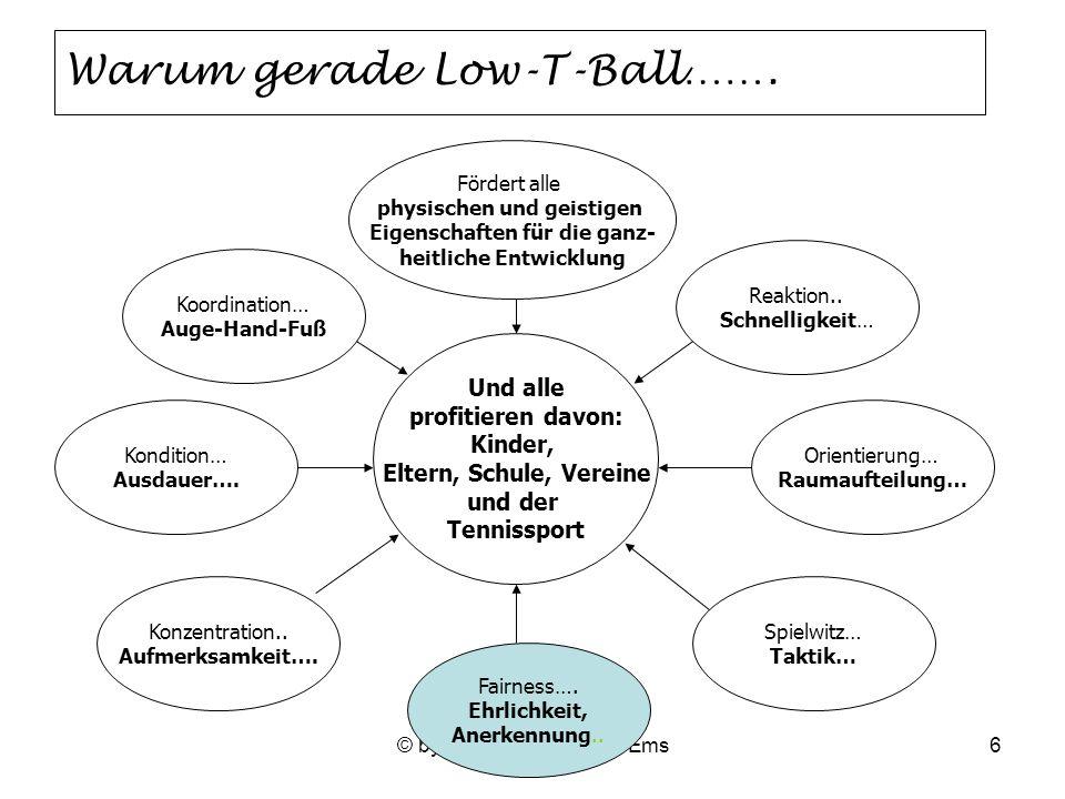 © by Schultennis Weser-Ems6 Warum gerade Low-T-Ball…….