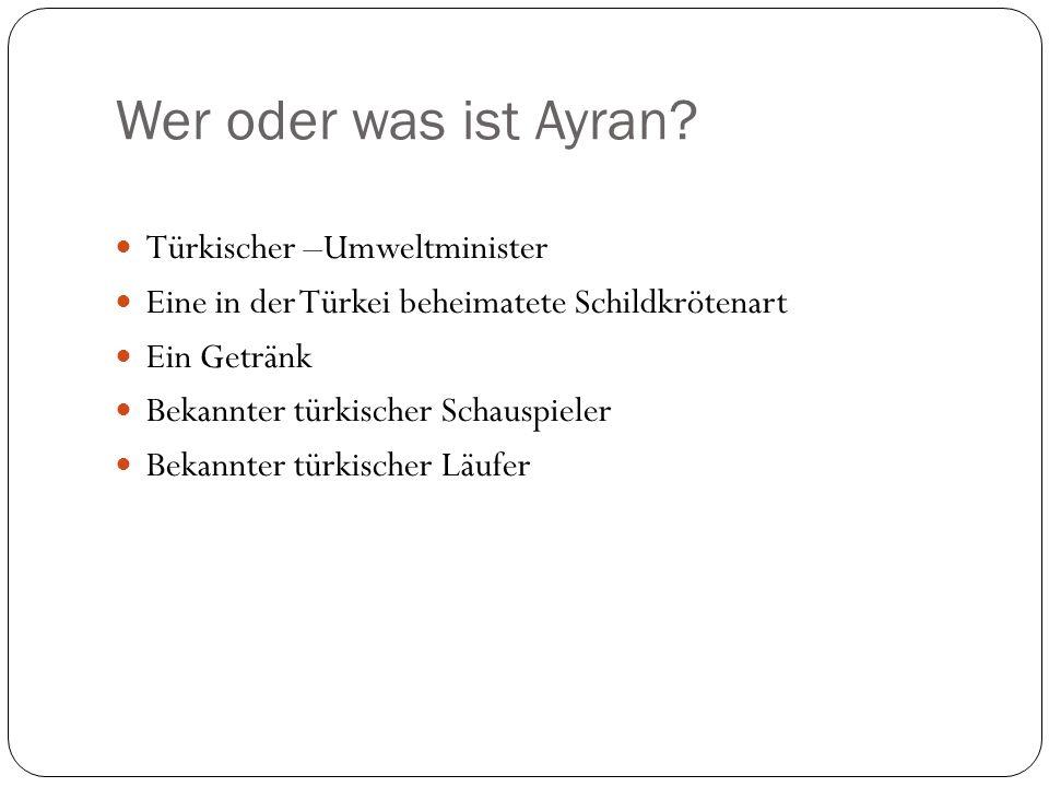 Wer oder was ist Ayran? Türkischer –Umweltminister Eine in der Türkei beheimatete Schildkrötenart Ein Getränk Bekannter türkischer Schauspieler Bekann
