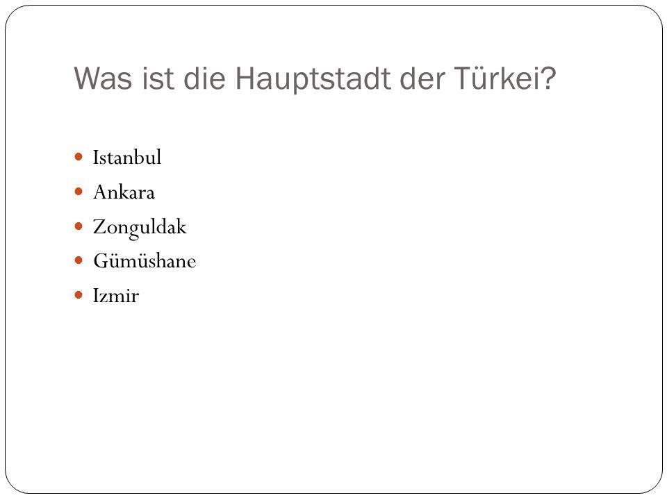Welche ist die größte Stadt der Türkei? Ankara Zonguldak Denizli Adana Istanbul