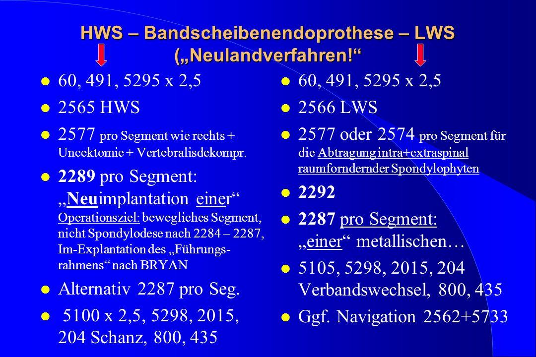HWS – Bandscheibenendoprothese – LWS (Neulandverfahren! l 60, 491, 5295 x 2,5 l 2565 HWS l 2577 pro Segment wie rechts + Uncektomie + Vertebralisdekom