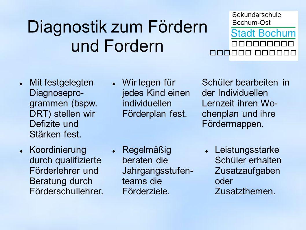 Sekundarschule Bochum-Ost gemeinsam besser lernen Diagnostik zum Fördern und Fordern Mit festgelegten Diagnosepro- grammen (bspw. DRT) stellen wir Def