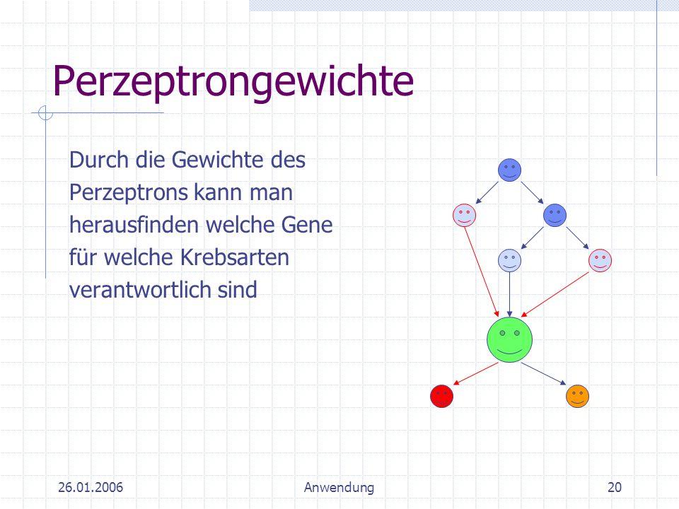 26.01.2006Anwendung20 Perzeptrongewichte Durch die Gewichte des Perzeptrons kann man herausfinden welche Gene für welche Krebsarten verantwortlich sin