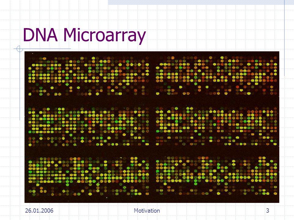 26.01.2006Motivation3 DNA Microarray