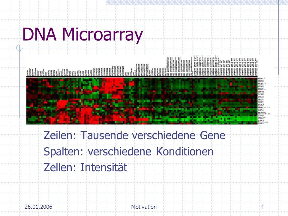 26.01.2006Motivation5 Microarray-Analyse Probleme: Sehr große Dimension Viel Redundanz Viel Rauschen