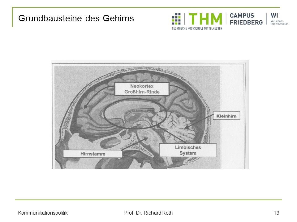 Kommunikationspolitik Prof. Dr. Richard Roth 13 Grundbausteine des Gehirns